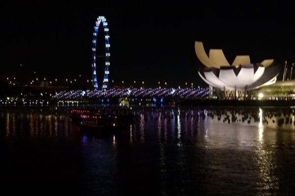 Roda gigante e flor de Singapura