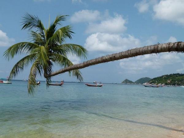 Koh Tao Tailândia