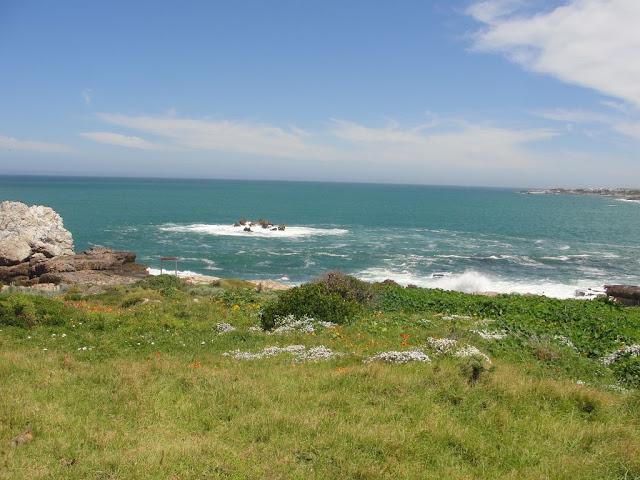 Praia Hermanus África do Sul
