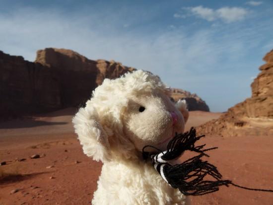 Adrenaline no deserto