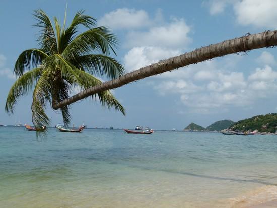 Koh Tao - Dicas de Viagem Tailandia