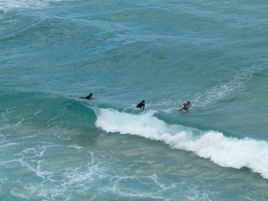 Os surfistas estão por todas as praias